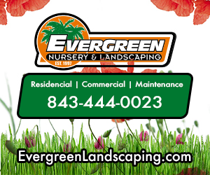 Evergreen Nursery